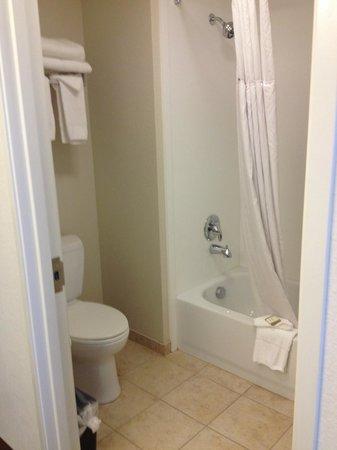 Baymont Inn & Suites Denver International Airport: Bathroom