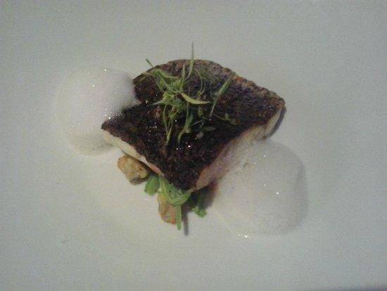 Submarino Restaurant : Trancetto di corvina (ombrina) su letto verde con vongole e spuma di mare