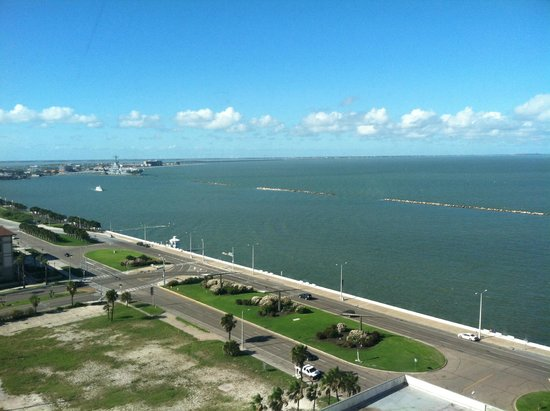 Omni Corpus Christi Hotel: View from the room