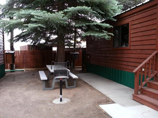 Lake View Lodge: bbq and picnic table in the shade of a nice, big tree!