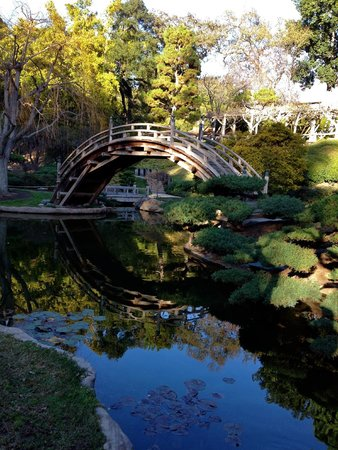 The Huntington Library, Art Collections and Botanical Gardens : Moon bridge in the Japanese garden