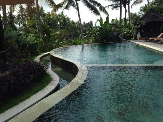 Agung Raka Resort & Villas : Pool