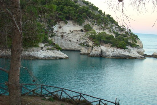 Residence I Delfini di Pugnochiuso: costa