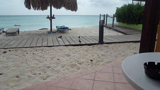 Tamarijn Aruba All Inclusive: view from bedroom