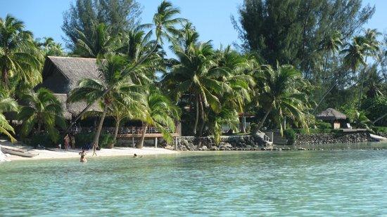 Hotel Les Tipaniers: Resto de plage