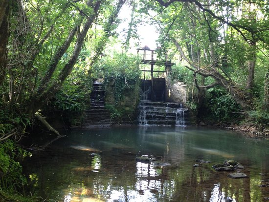 Mangerton Mill: End of the river walk