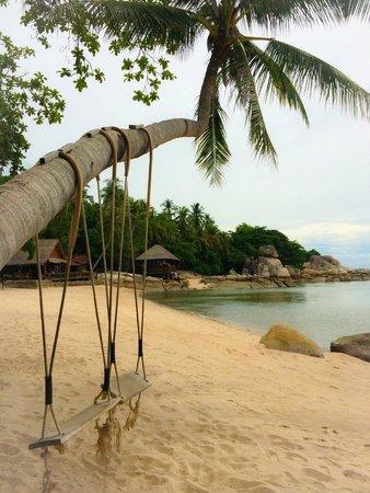 Sensi Paradise: Schauckeln am Strand