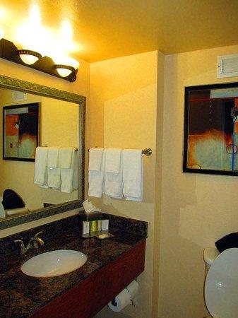 Doubletree Hotel Tallahassee: Bathroom