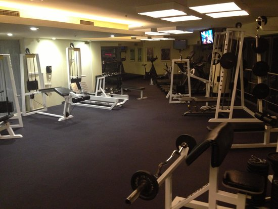 Stamford Plaza Sydney Airport : The gyn
