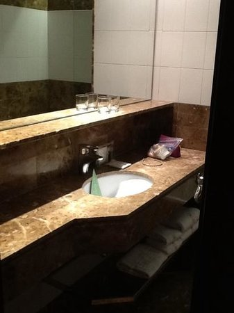 Hotel Astoria: bathroom