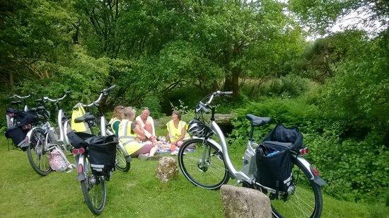 Dartmoor Electric Bicycles: Summer evening picnic on Dartmoor with Electric Bicycles