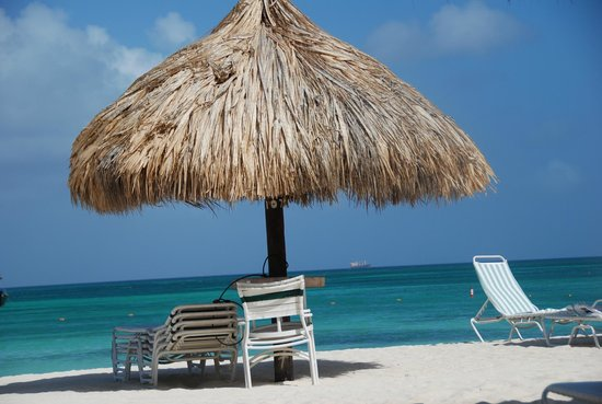 Palapas on Palm Beach