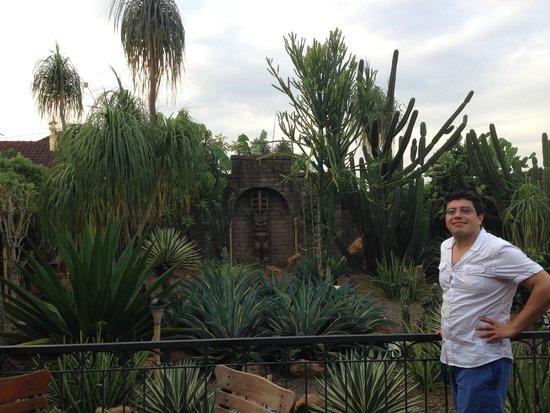 La Mexicana: the garden