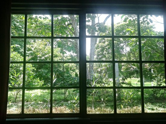 La Posada Bed & Breakfast: Vista al jardin