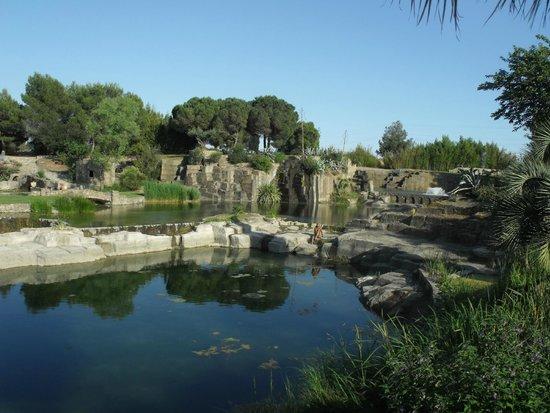 Jardin de st adrien photo de le jardin de saint adrien servian tripadvisor - Jardin de saint adrien ...