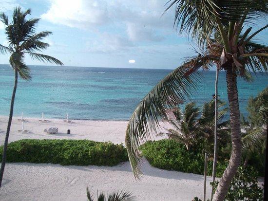 The Westin Puntacana Resort & Club: View from my balcony