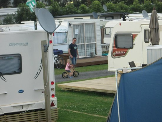 Beachaven Holiday Park : camp grounds