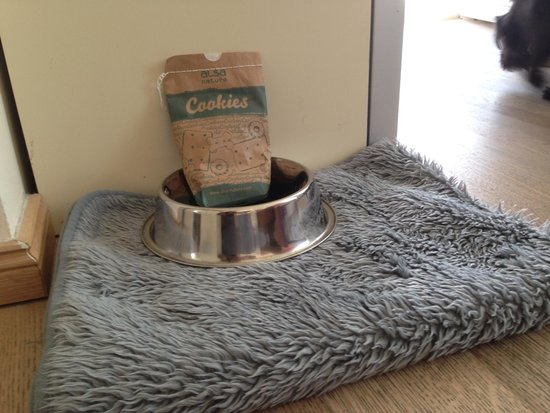 Hotel meerSinn: Special treat for 4 legged guests
