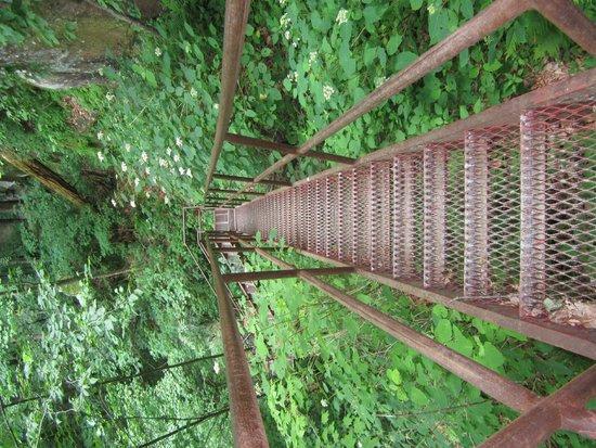 Yahoo Falls: Stairs