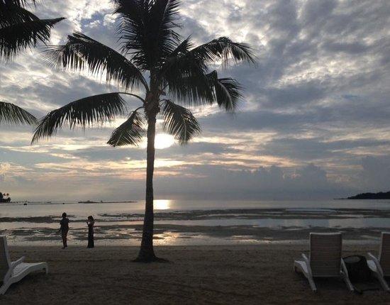 Musket Cove Island Resort: Beach at sunset