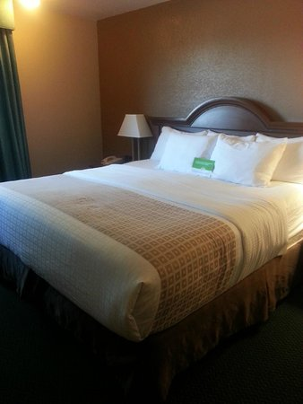 King Size Bed In Small Room comfy king size bed in small room - picture of la quinta inn
