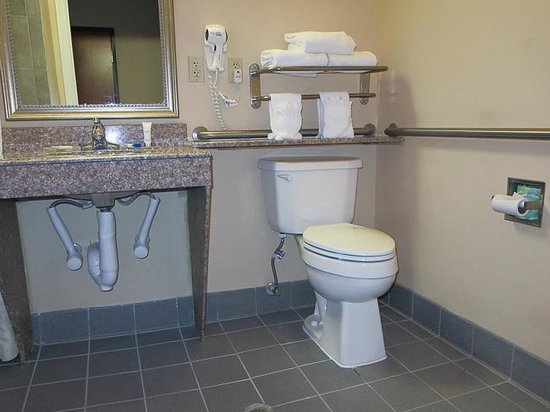 Best Western Plus New Caney Inn & Suites: Sink with cut out with wrapped pipes and toilet