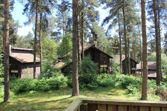 Center Parcs Whinfell Forest: lodges