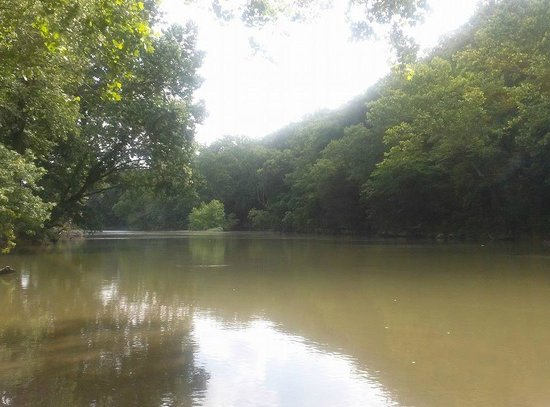 Gasconade Hills: River twenty feet from our campsite