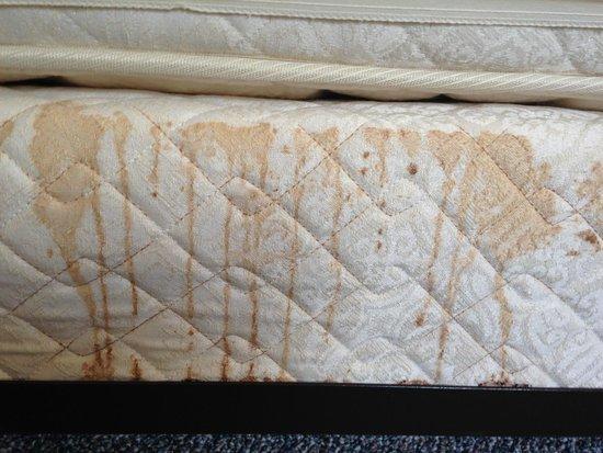 Hatteras Marlin Motel: stain on box springs