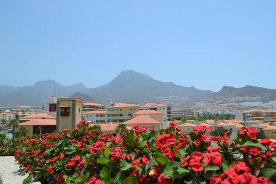 Fanabe Costa Sur Hotel: С крыши отеля, зона отдыха с басейном.