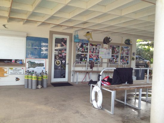 Divetech : Well equipped dive shop with great set up area and lockers!