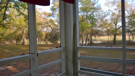 Gold Head Branch State Park: Screened patio with view of lake.