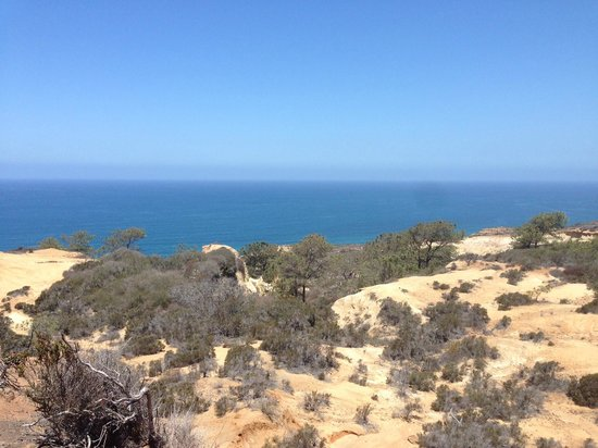 Torrey Pines State Natural Reserve: What a beautiful place!