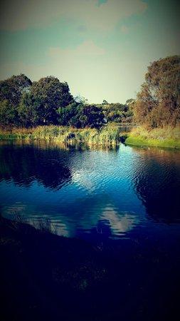 Lake McIntyre