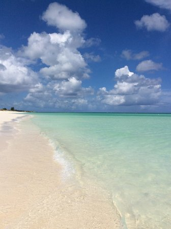 COMO Parrot Cay, Turks and Caicos: Morning beach walk