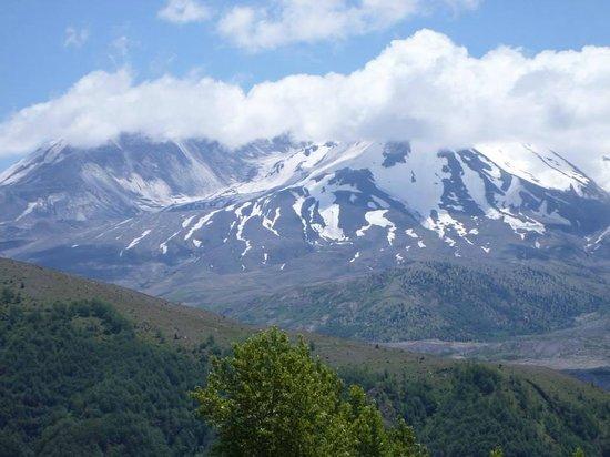 Mount St. Helens Visitor Center: Mt St Helens