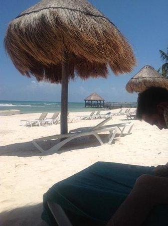 Secrets Silversands Riviera Cancun : The hotel beach