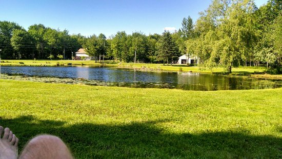 Eden Village Motel and Cottages: Catch and release pond with pedal boat