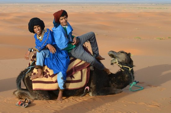 Sahara Garden: Ali and Alil, Fantastic Guides for Camel Rides