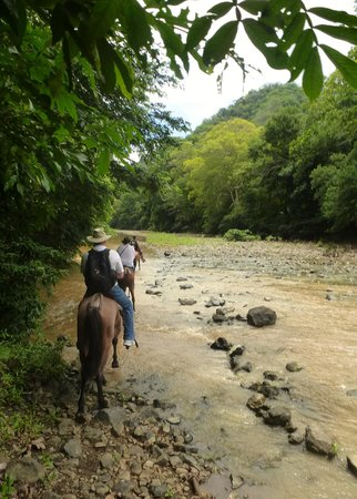 Nosara Paradise Rentals: Waterfall on Horseback tour