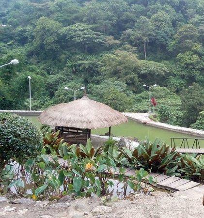 BenCab Museum: garden