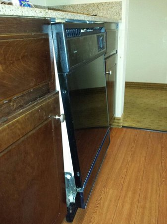 Homewood Suites by Hilton Chattanooga/Hamilton Place : Dishwasher in room 317