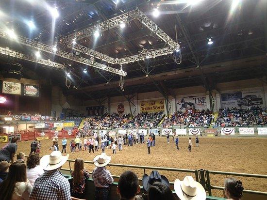 Stockyards Rodeo : Mutton scramble