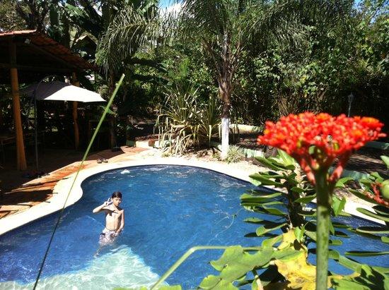Congo Lodge : piscina Congo