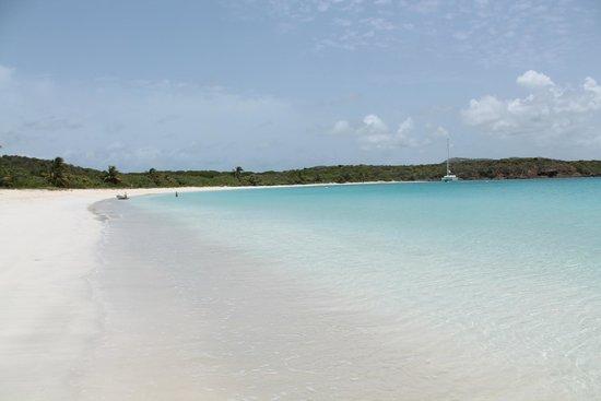 Pez-Vela Catamaran : Tortuga Beach