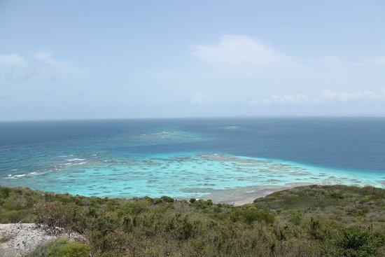 Pez-Vela Catamaran : Tortuga Island
