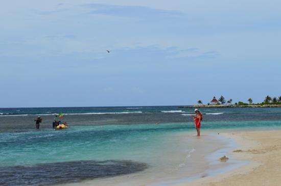 Luxury Bahia Principe Runaway Bay Don Pablo Collection: beach