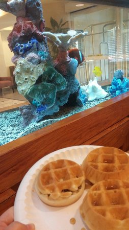 BEST WESTERN Patriots Point: Breakfast waffles beside the fish tank