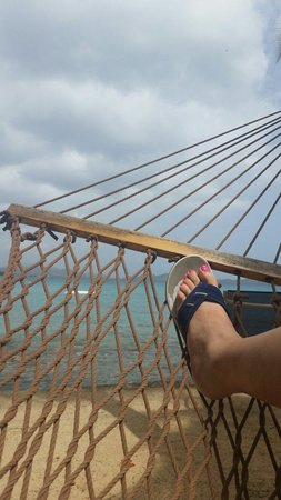 Gallows Point Resort: And of course a view from the hammock at the hotel down on the 'beach'! :)