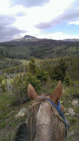 Broken Arrow Lodge: The best kind of view there is, through a trusty horse's ears!